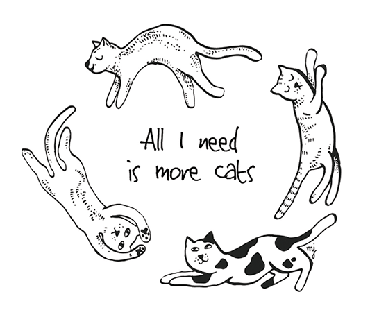 All i need is more cats