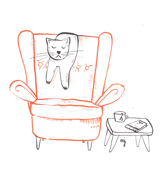 Cat on an armchair